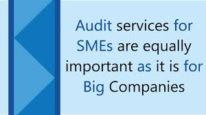 Audit Service for SMEs